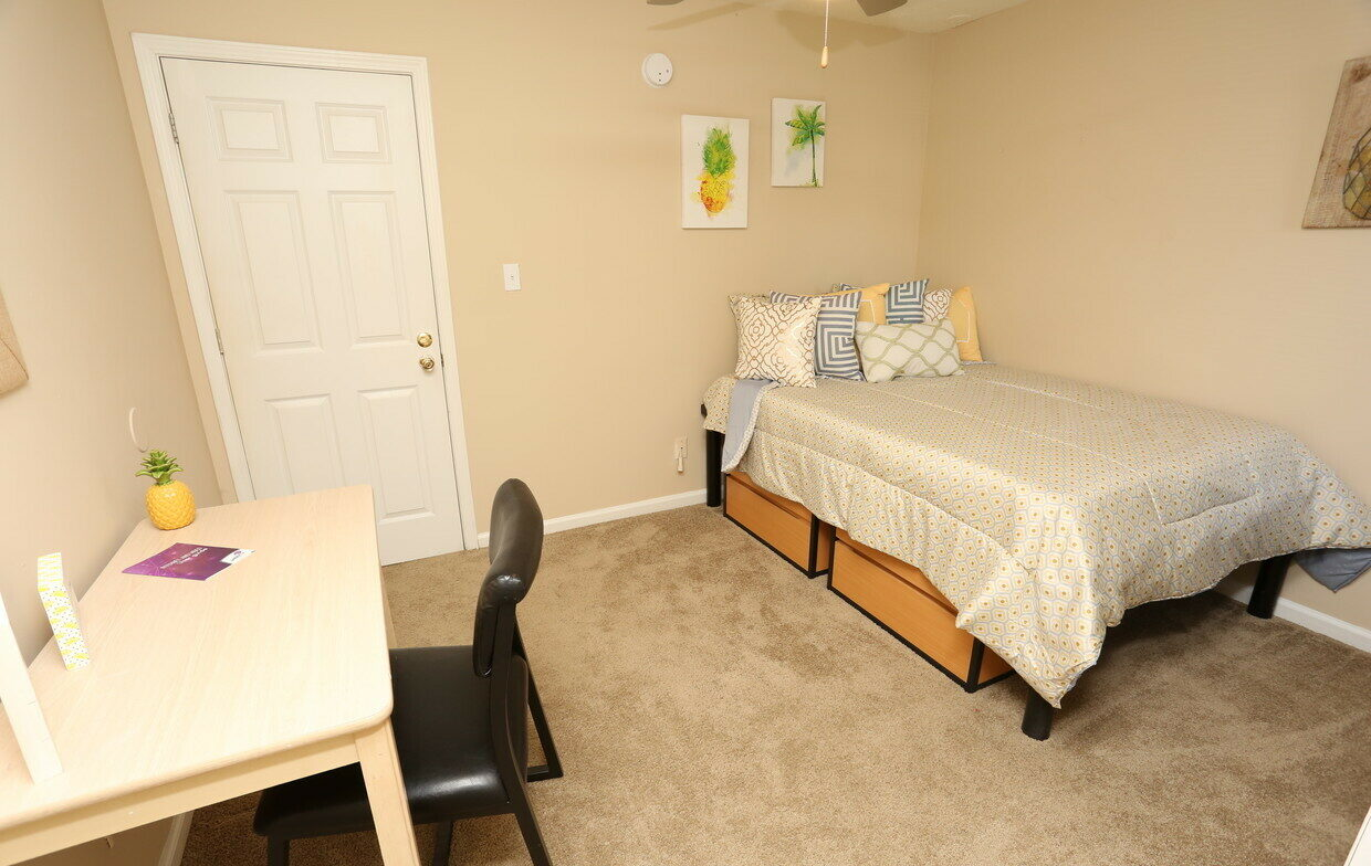 zillow section 8 homes for rent tampa fl