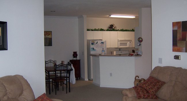 forest hills apartments for rent nj